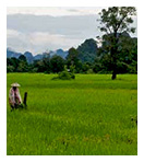 LAO PDR_sustainable-natural-resource-management